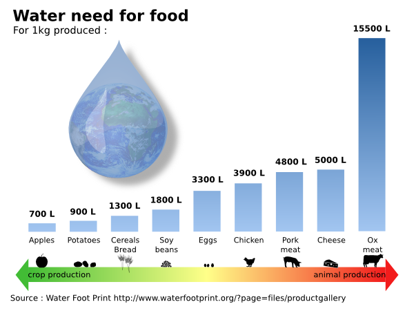 Meat the cause of the drought – African Climate Reality Project